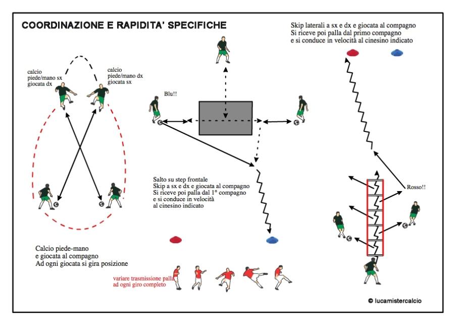 coordinazione e rapidità 1